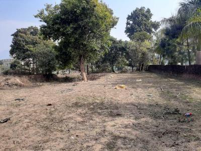 16000 Sq.ft Residential Plot for Sale in Subhash Nagar, Dehradun