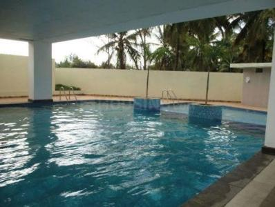 Gallery Cover Image of 1333 Sq.ft 3 BHK Apartment for rent in SV Brindavanam, Panathur for 25000