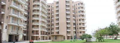 Gallery Cover Image of 503 Sq.ft 2 BHK Apartment for buy in Adore Happy Homes Exclusive, Sector 86 for 2400000