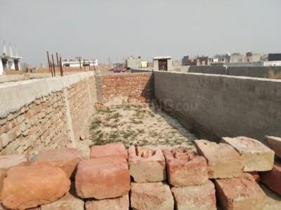 Gallery Cover Image of 900 Sq.ft Residential Plot for buy in Sector 142 for 1200000
