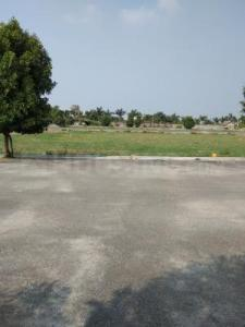 Gallery Cover Image of  Sq.ft Residential Plot for buy in Keeranatham for 3519000