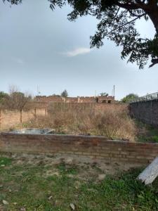 392 Sq.ft Residential Plot for Sale in Basant City, Ludhiana