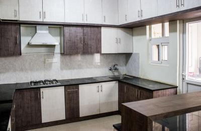 Kitchen Image of PG 4642200 Electronic City in Electronic City