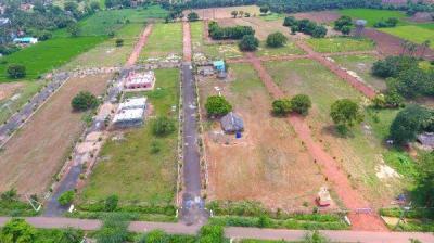 1800 Sq.ft Residential Plot for Sale in Pallakadiyam, Rajahmundry
