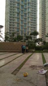 Gallery Cover Image of 2500 Sq.ft 3 BHK Apartment for rent in Mahagun Mezzaria, Sector 78 for 40200