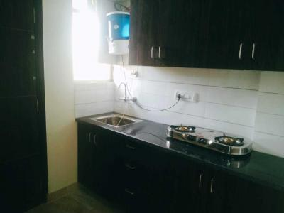 Kitchen Image of Green House PG in Sector 15