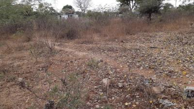 Gallery Cover Image of  Sq.ft Residential Plot for buy in Nagole for 8400000