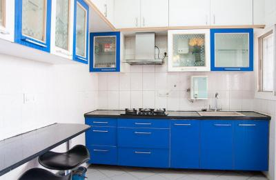 Kitchen Image of PG 4643152 Whitefield in Whitefield
