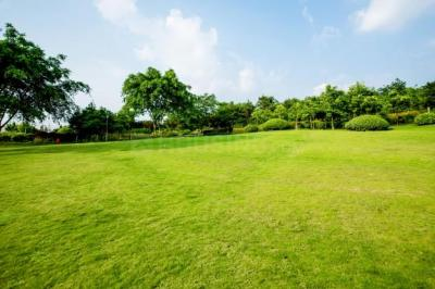 71874 Sq.ft Residential Plot for Sale in Sultanpur, New Delhi