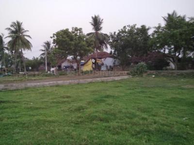 170 Sq.ft Residential Plot for Sale in Diwancheruvu, Rajahmundry