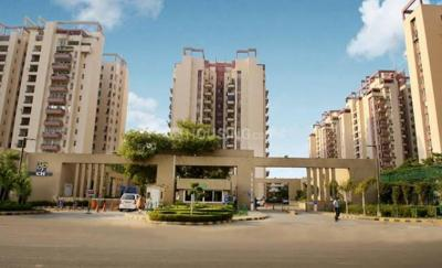 Gallery Cover Image of 1805 Sq.ft 3 BHK Apartment for rent in Orchid Petals, Sector 49 for 45000