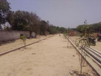 Gallery Cover Image of  Sq.ft Residential Plot for buy in Ahinsa Khand for 1200000