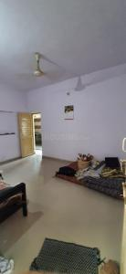 Gallery Cover Image of 765 Sq.ft 2 BHK Apartment for rent in Vasna for 10000