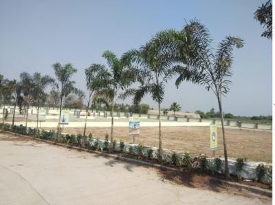Gallery Cover Image of  Sq.ft Residential Plot for buy in Sadar Bazaar for 2073000