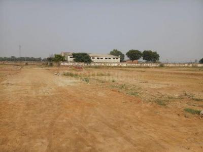 550 Sq.ft Residential Plot for Sale in Housing Board Colony, Palwal
