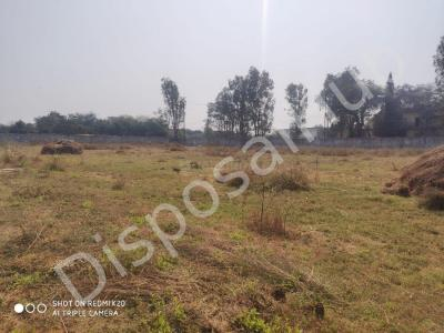 886 Sq.ft Residential Plot for Sale in Chanvai, Valsad