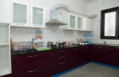 Kitchen Image of PG 4643325 Sector 24 in DLF Phase 3