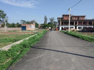 1000 Sq.ft Residential Plot for Sale in Indira Nagar, Lucknow