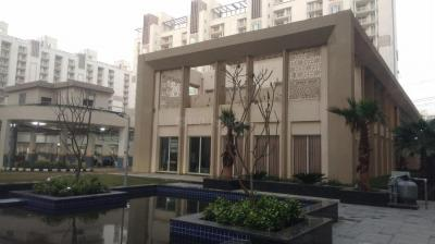 Gallery Cover Image of 1650 Sq.ft 3 BHK Apartment for rent in Sector 102 for 17500