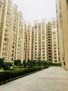 Gallery Cover Image of 885 Sq.ft 2 BHK Apartment for rent in Raj Nagar Extension for 8000