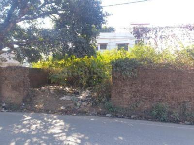 600 Sq.ft Residential Plot for Sale in Malsi, Dehradun