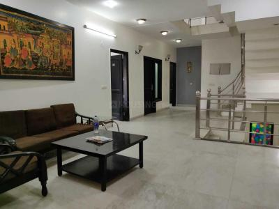 Living Room Image of PG 4193547 Dlf Phase 2 in DLF Phase 2