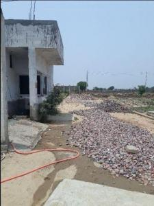 Gallery Cover Image of  Sq.ft Residential Plot for buy in Sector 10 Dwarka for 86000000