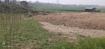 2675 Sq.ft Residential Plot for Sale in Lalbagh, Patna