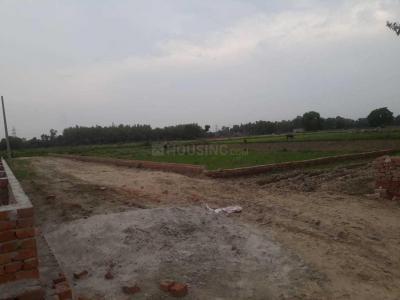 Gallery Cover Image of  Sq.ft Residential Plot for buy in Pratap Nagar for 5800000