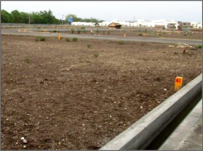 Gallery Cover Image of  Sq.ft Residential Plot for buy in Saravanampatty for 1625000