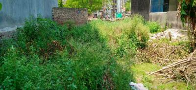 Gallery Cover Image of  Sq.ft Residential Plot for buy in Vaishali for 9500000