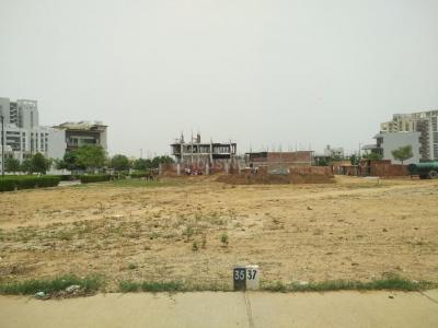 1300 Sq.ft Residential Plot for Sale in Sector 10A, Gurgaon