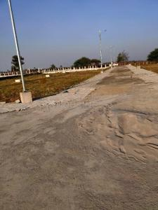 1200 Sq.ft Residential Plot for Sale in MIHAN, Nagpur