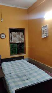 Bedroom Image of PG 4896880 Kalighat in Kalighat