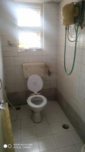 Bathroom Image of PG 6608732 Kothrud in Kothrud