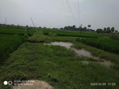 6125 Sq.ft Residential Plot for Sale in Naubatpur, Patna
