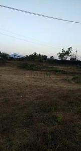 Gallery Cover Image of  Sq.ft Residential Plot for buy in Palghar for 60000