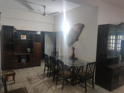 Gallery Cover Image of 1800 Sq.ft 3 BHK Apartment for rent in DJA Apartment, Sector 13 Dwarka for 32000