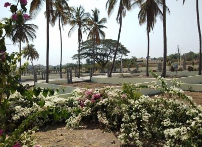 Gallery Cover Image of  Sq.ft Residential Plot for buy in Hadapsar for 1822800