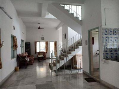 Gallery Cover Image of 3700 Sq.ft 3 BHK Independent House for buy in Picnic Garden for 22000000