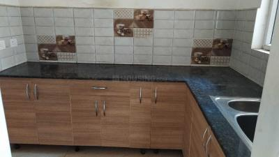 Gallery Cover Image of 955 Sq.ft 2 BHK Apartment for rent in Noida Extension for 9000