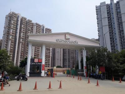 Gallery Cover Image of 1082 Sq.ft 2 BHK Apartment for rent in Sector 74 for 16000