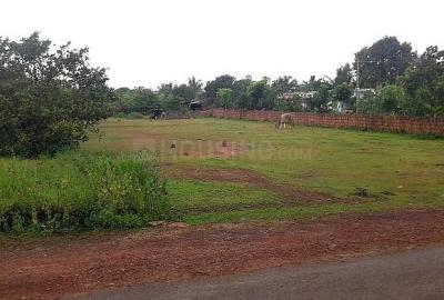 Gallery Cover Image of  Sq.ft Residential Plot for buy in Wagholi for 640000000
