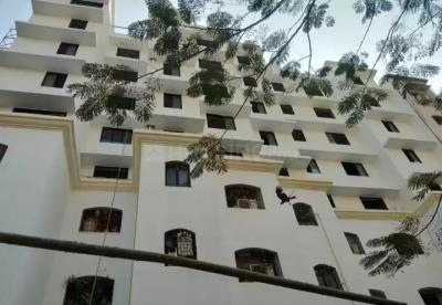 Gallery Cover Image of 550 Sq.ft 1 RK Apartment for rent in Bhandup West for 17000