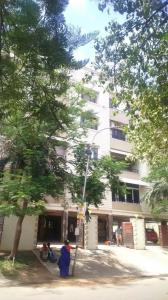 Gallery Cover Image of 2300 Sq.ft 3 BHK Apartment for rent in Adyar for 75000