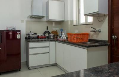 Kitchen Image of 1101 Marvel Azure in Magarpatta City