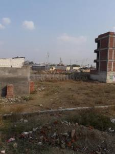 Gallery Cover Image of 1184 Sq.ft Residential Plot for buy in Sector 117 for 6600000