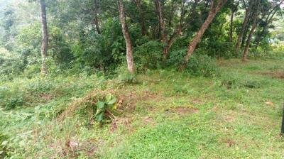 2200 Sq.ft Residential Plot for Sale in Mannaramala, Pathanamthitta