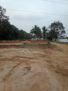 Gallery Cover Image of  Sq.ft Residential Plot for buy in Basavanapura for 4800000