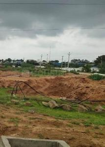 Gallery Cover Image of  Sq.ft Residential Plot for buy in Mansanpally for 3800000